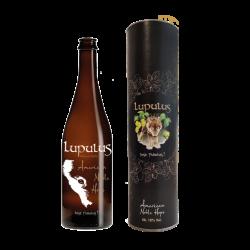 ROCHEFORT 8% - 33CL